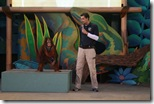 Animal Actors-Show